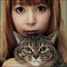 中川翔子、捨て猫をめぐる炎上騒動が拡大…動物愛護を訴えながらリアルファー販売?