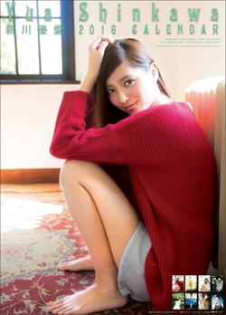 151124_sinkawa_tp.jpg