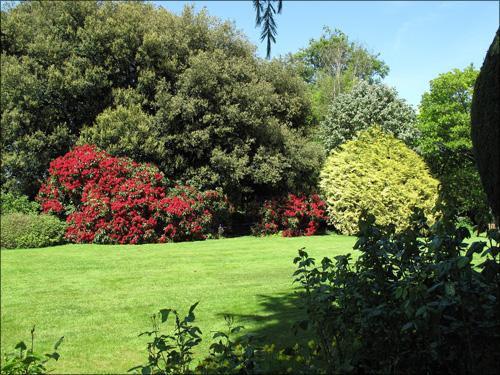 【エロ体験談】隣の芝生が青く見えちゃう人妻のイケない遊びの画像1