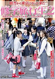 『田舎から東京にやってきた 修学旅行生2』