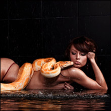 蛇が女性器に侵入し死亡した事件