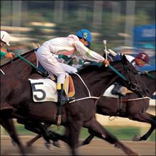 【エロ体験談】ノーパンで馬乗り! 競馬場で出会った女のコの意外すぎる目的