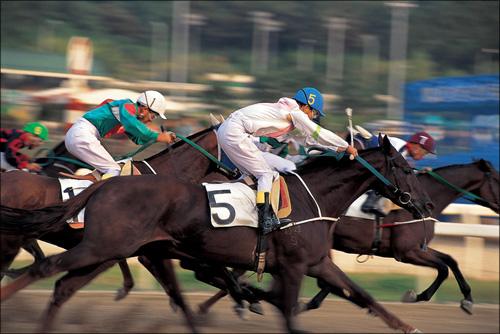 【エロ体験談】ノーパンで馬乗り! 競馬場で出会った女のコの意外すぎる目的の画像1