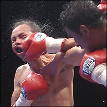 相撲界や芸能界より根深い? ボクシング業界と暴力団の関係