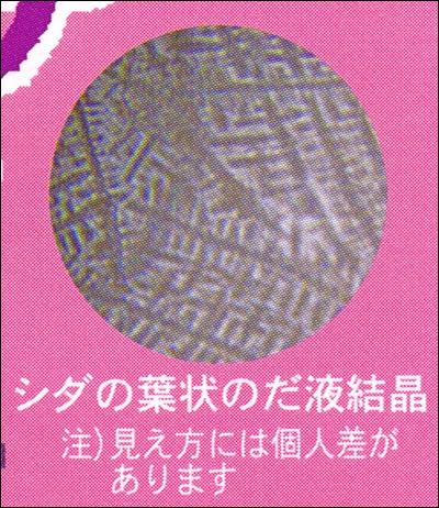 genki_hiran0531_09.jpg