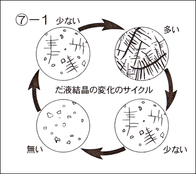 genki_hiran0531_10.jpg