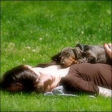 愛犬と心中? 不可解な女性の水死体が発見された事件
