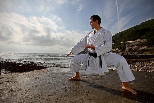 karateka0711.jpg