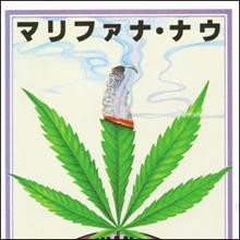 大麻栽培で生活する人々