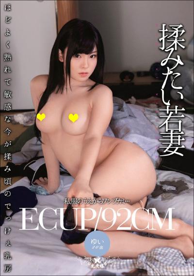 tokosyo_av65fla.jpg