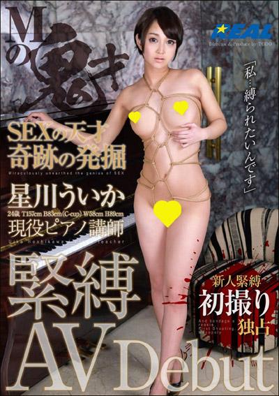 tokosyo_av_406TP.jpg