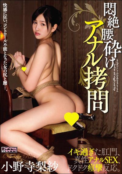 tokosyo_av_511TP.jpg