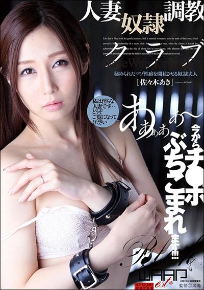 tokosyo_av_545TP.jpg